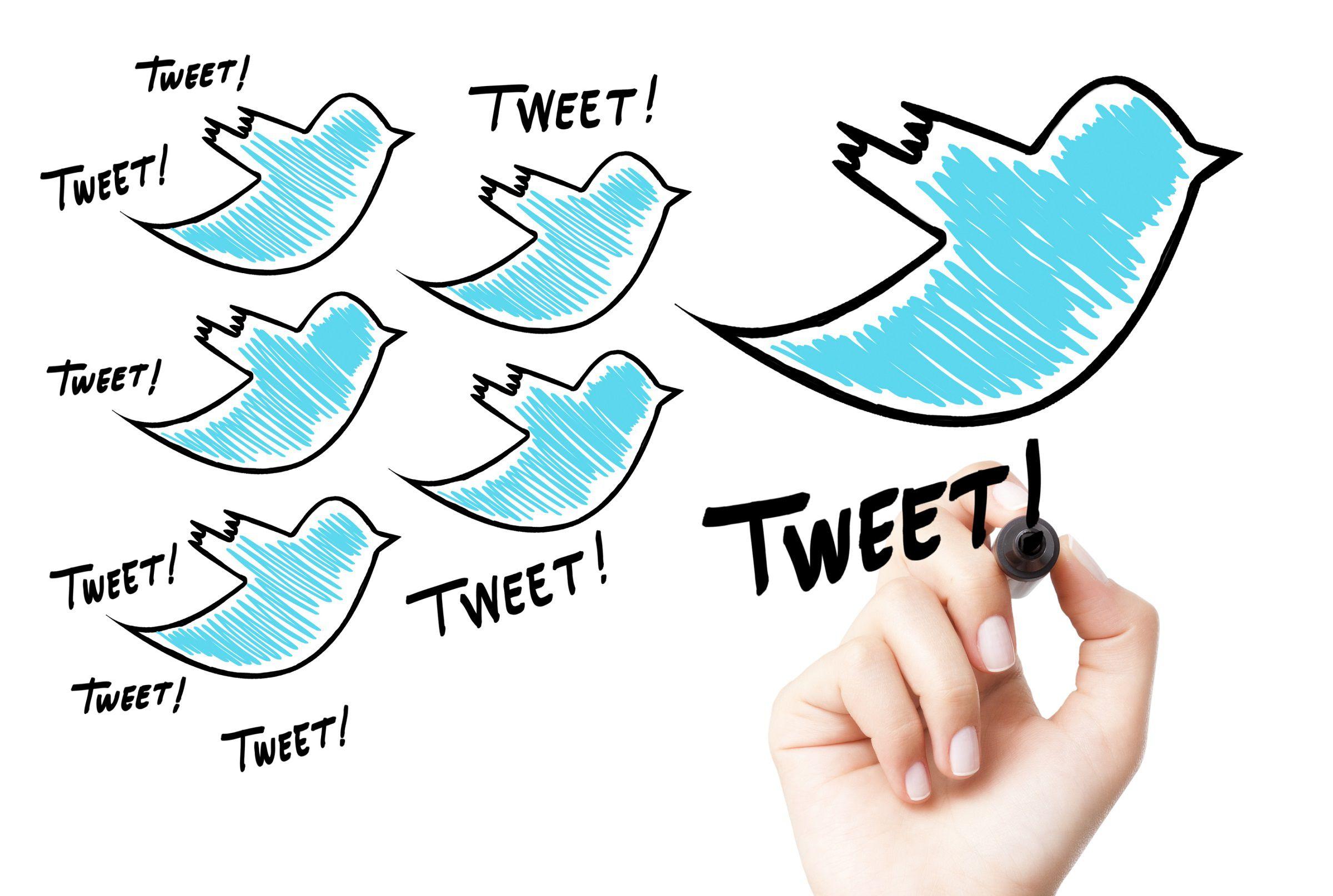 Накрутка фолловеров в Твиттер